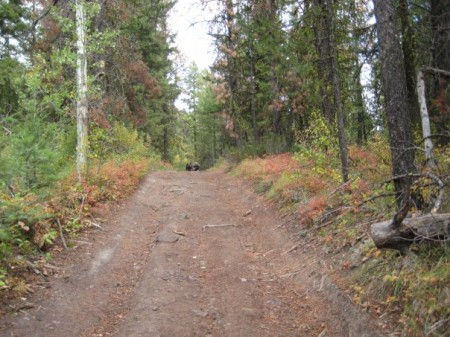 one-of-several-trails-to-hayman-lake