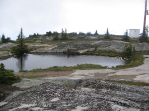 Small pool on the top of Little White