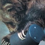 Bear Canister for keeping food safe!