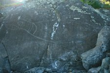 Dateless petroglyph at Alldridge Point in East Sooke Park, British Columbia.