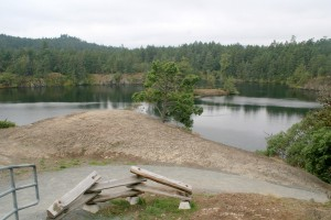 There are a few look outs above Lower Thetis Lake that  provide views of the surrounding park.