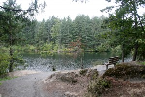 A well-groomed loop trail around Lower Thetis Lake.